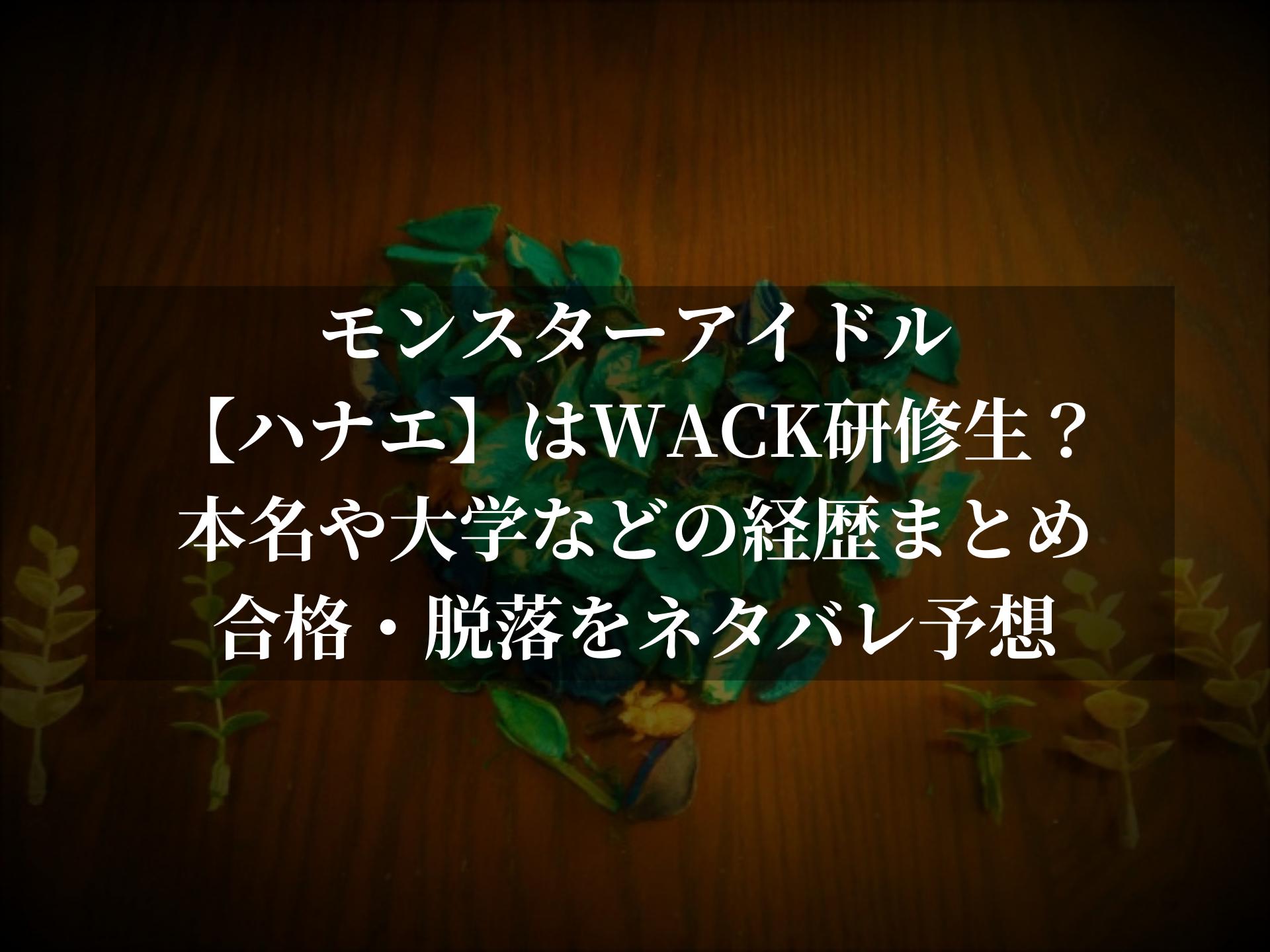 モンスターアイドル(ハナエ)はWACK研修生?本名・大学などの経歴